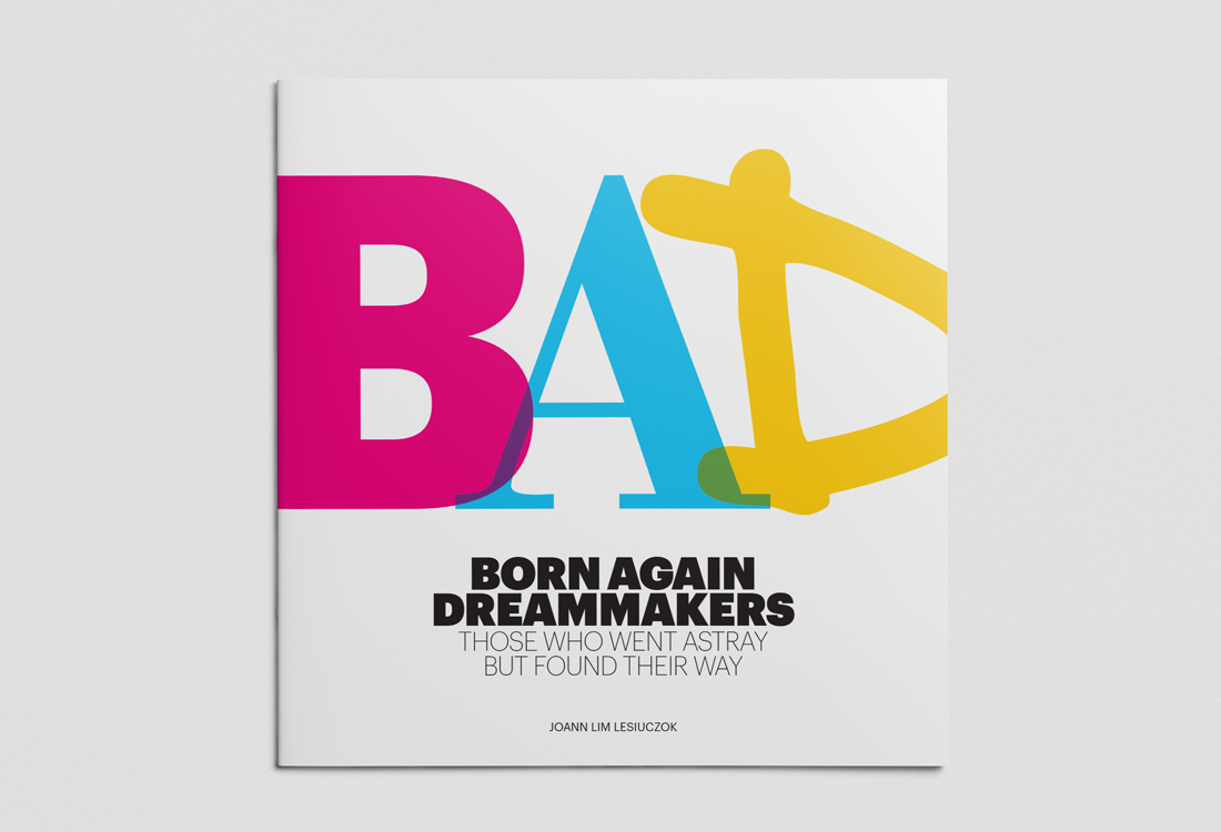 Big Picture Fine Focus Born Again Dreammakers book